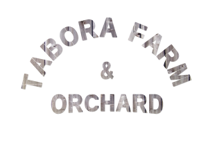 Logo - Tabora Farm and Orchard-new stencil-barnwood-clear